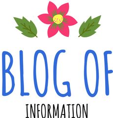 Blog of Information